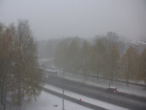 Золотая осень. Снегопад.