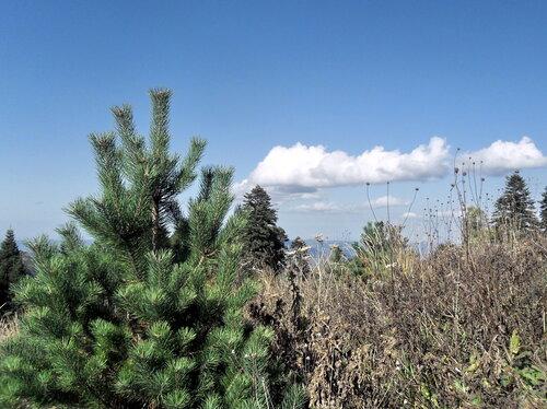 Тропа на Тхач, сентябрь 2012