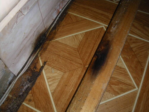 Фото 6. Последствия короткого замыкания. Копоть на стене и на обратной стороне плинтуса.