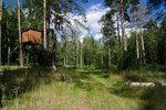[2015] будка в лесу к северу от Алешунино