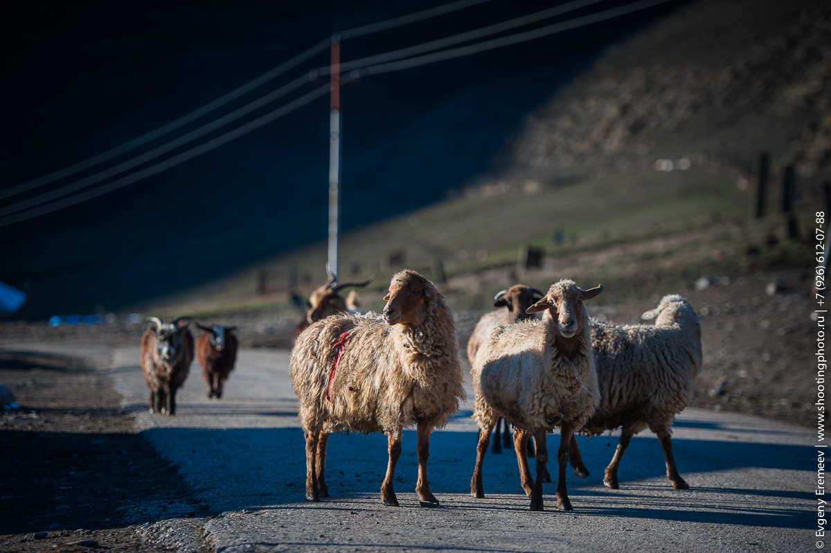 Хыналык, Азербайджан