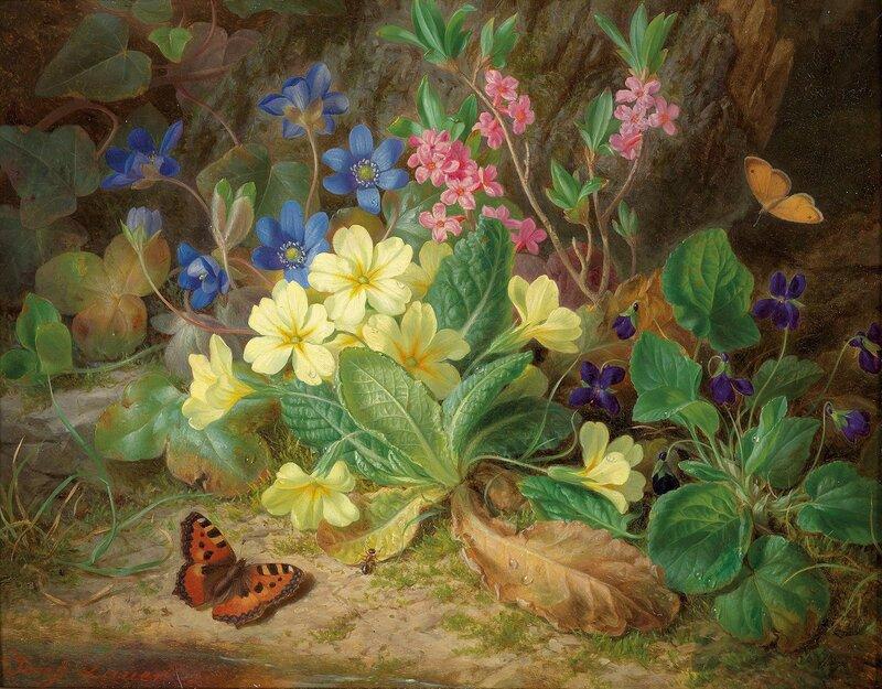 Альпийские цветы, фиалки и бабочки