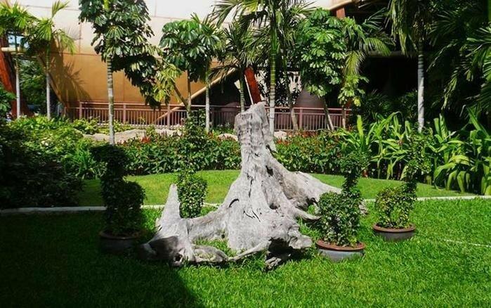 Рутарий. Коряги в саду. Ландшафтный дизайн