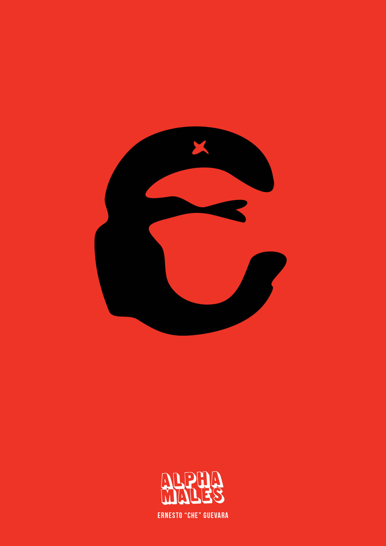 E is for Ernesto Che Guevara. Freedom-fighting alpha and the face that sold a thousand t-shirts.