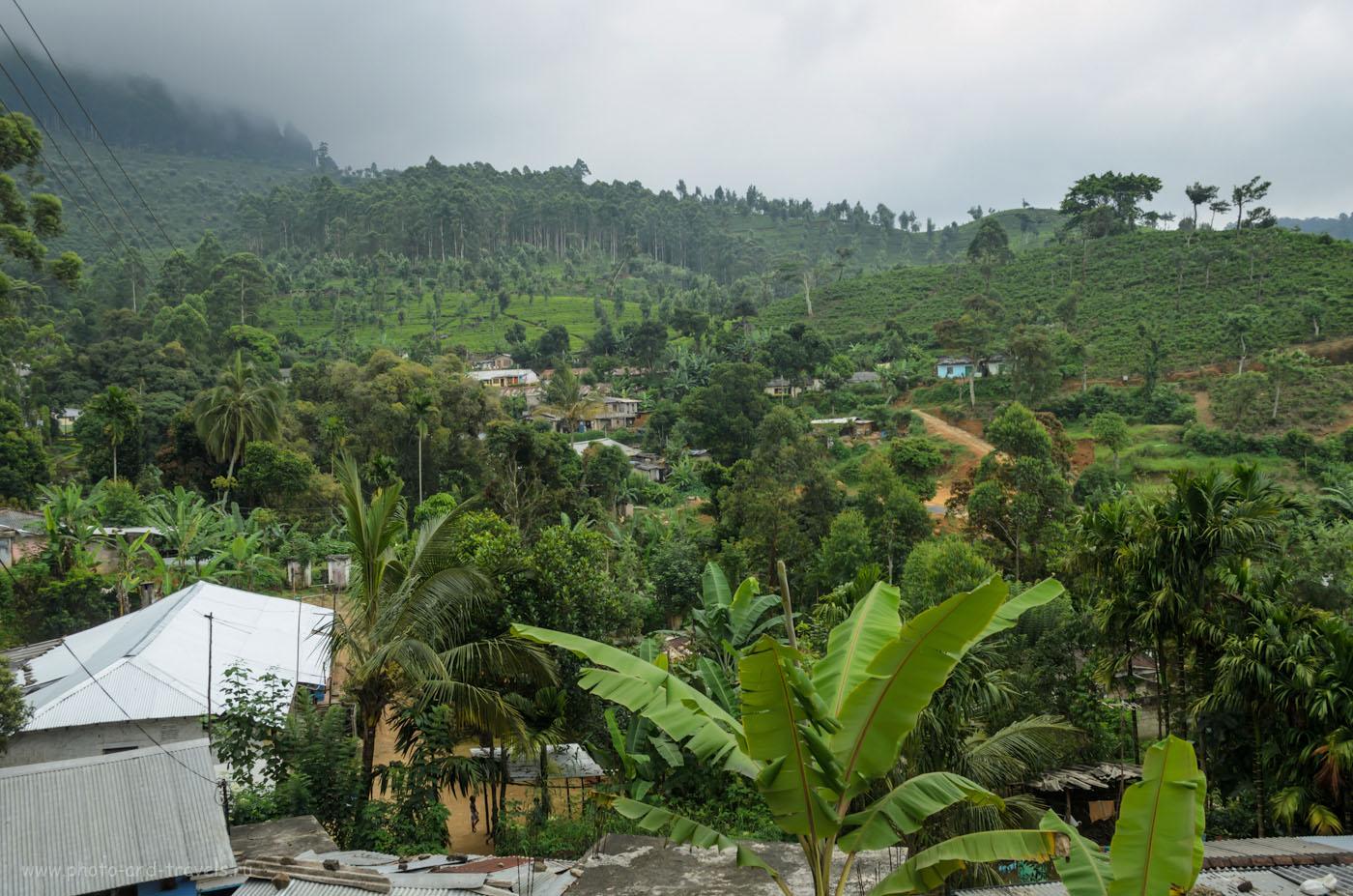 Фотография 6. Как мы добирались на Пик Адама через неизвестную дорогу, пересекающую заповедник Хортон Плейнс на Шри-Ланке. Отчет о самостоятельном отдыхе.