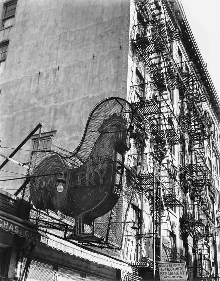 1935. Магазин Птица, 7 Ист-стрит