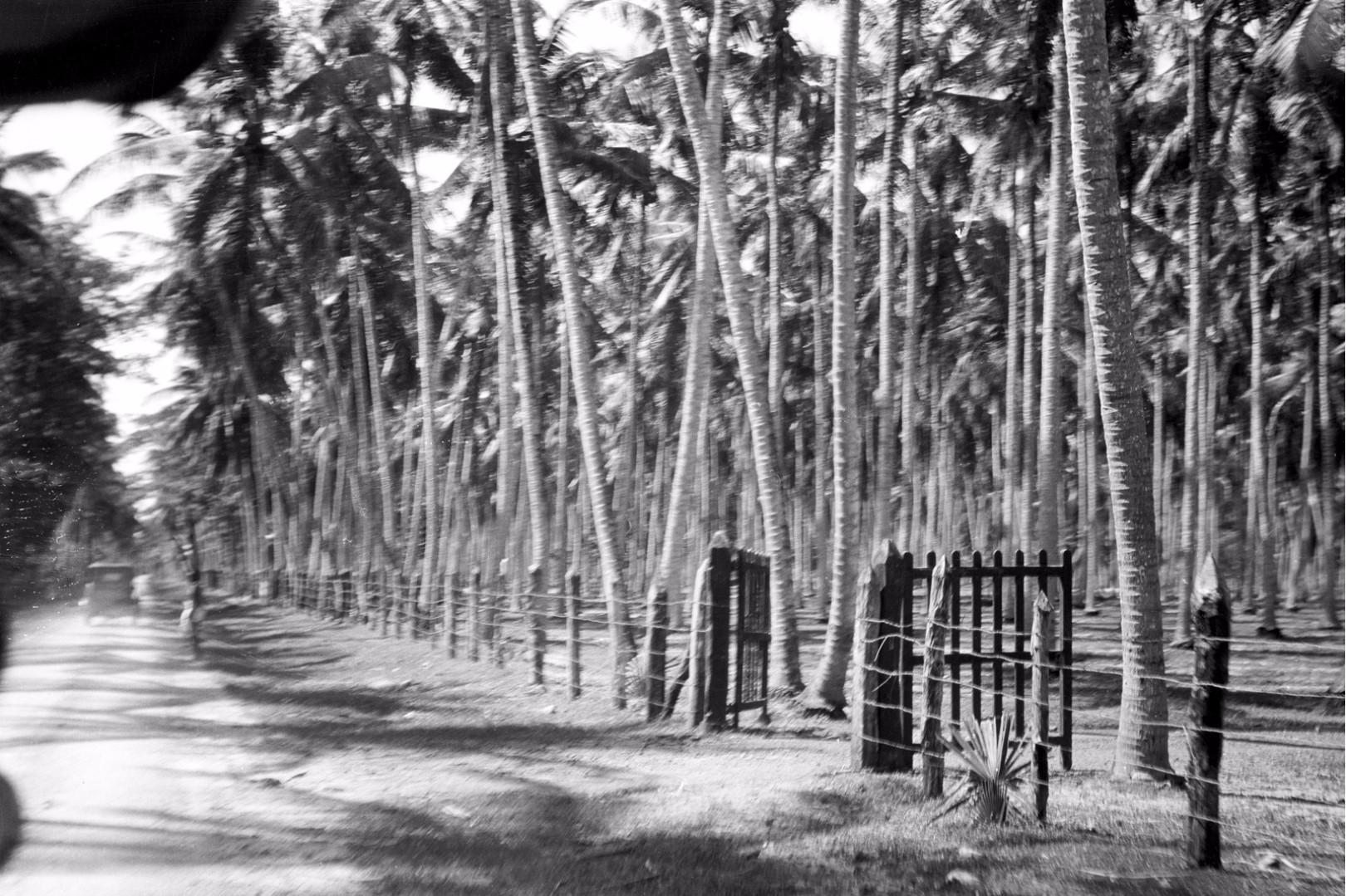 300. Дорога в Калкуду