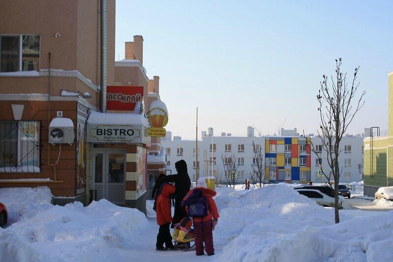 Кошелев январь 100.JPG