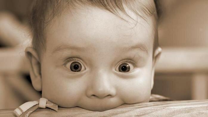 Стивен Фрай: 1339 фактов, от которых у вас челюсть отвиснет (книга)