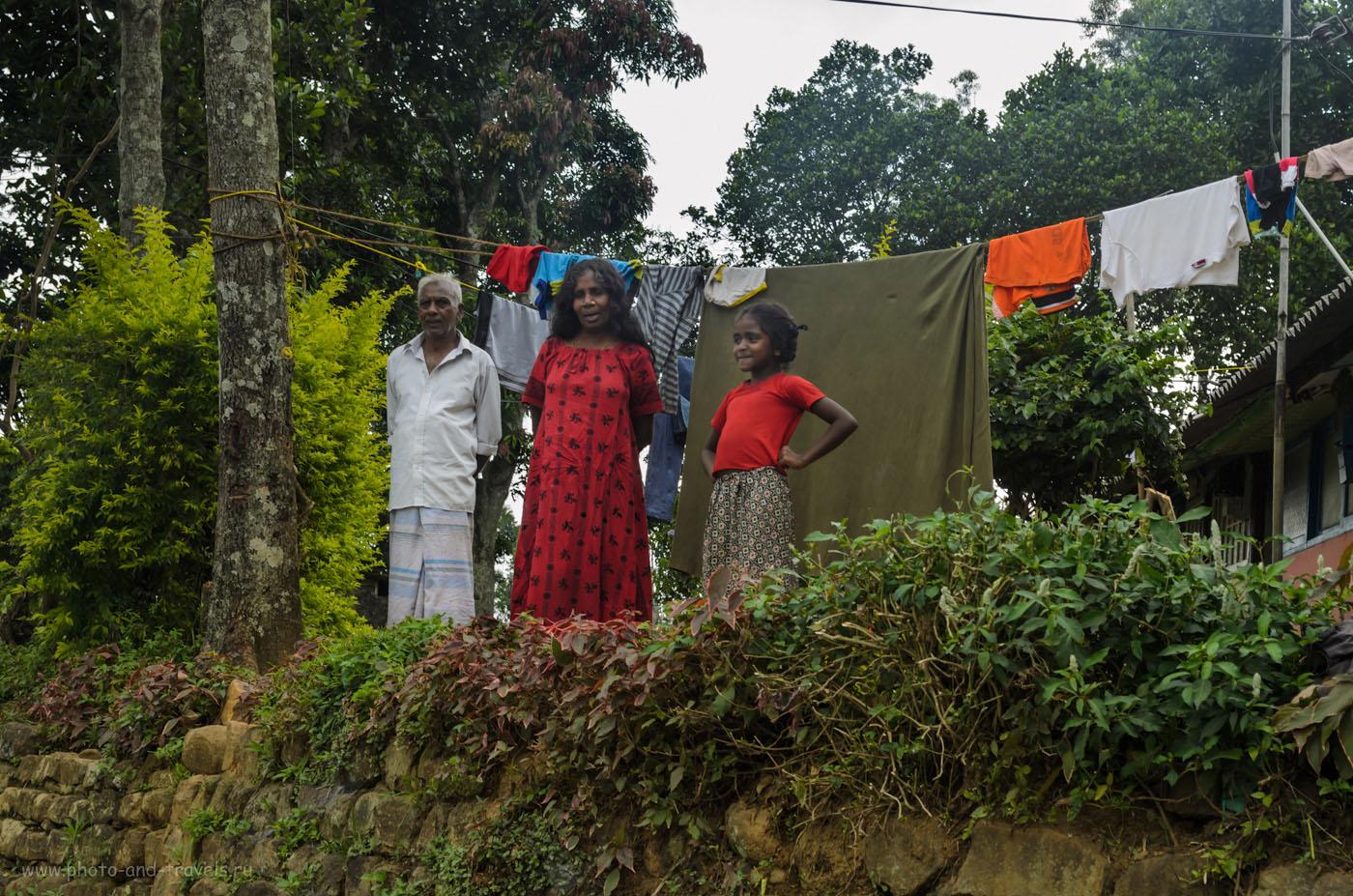 Фото 7. Интерес жителей Шри-Ланки, проживающих в горах, гораздо выше, чем на курортах. Отчет о том, как добраться до Пика Адама по нестандартному маршруту. На автомобиле через территорию парка Хортон Плейнс (Horton Plains National Park)