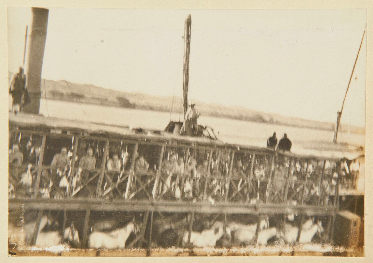 Август 1898. Пароход, перевозящий 21-й Уланский полк между Ассуаном и Вади-Хальфа