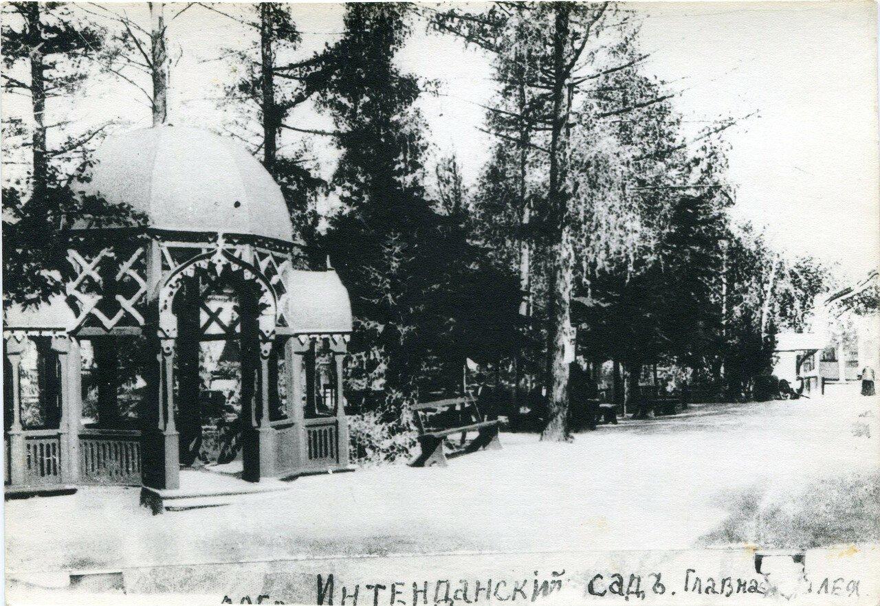 Интендантский сад. Главная аллея