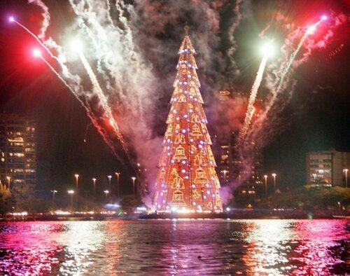 Весь мир соревнуется в красоте рождественских елей