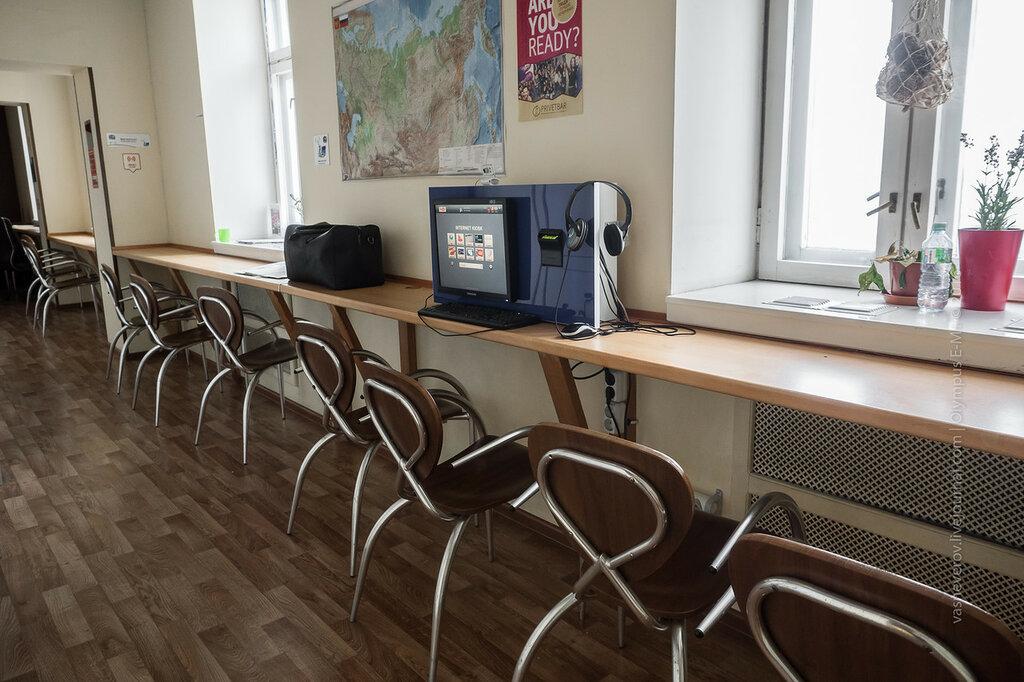 bear hostels hostel moscow хостел москва