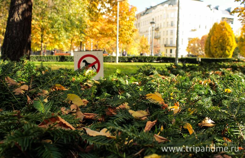 Осенний Будапешт-1.jpg