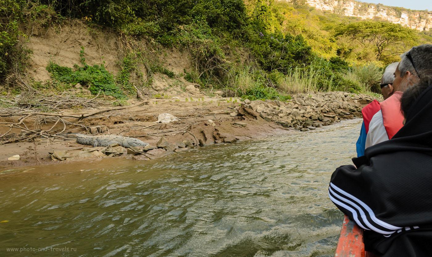 Фото 12. Весёлая экскурсия в каньон Sumidero. Отчет о путешествии по Мексике самостоятельно на автомобиле.