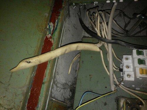 Срочный вызов электрика на улицу Композиторов (Выборгский район СПб).