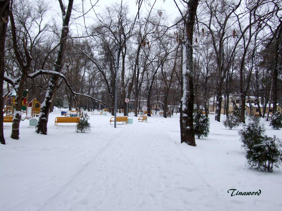Парк-им.-В.И,-Ленина-20.jpg