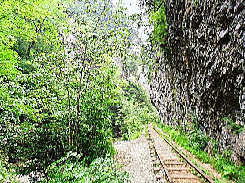 В Гуамском ущелье ... SAM_0440.JPG