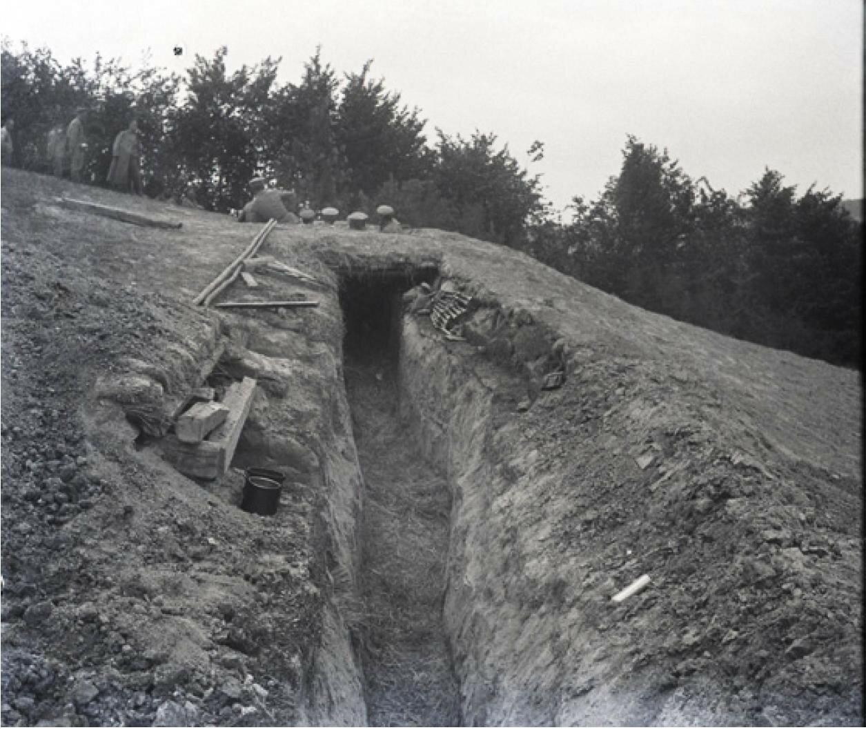 83. 1916. Русские окопы. Начало лета 1916. Позиции на реке Сервечь, Минская губерния