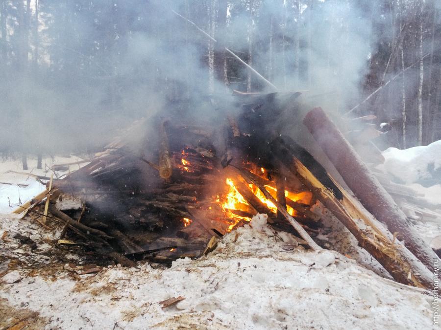 пожар в лес