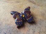 butterfly72.jpg