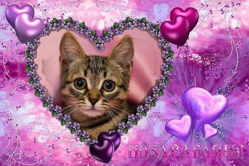 Романтичные открытки и поздравления, признания в любви