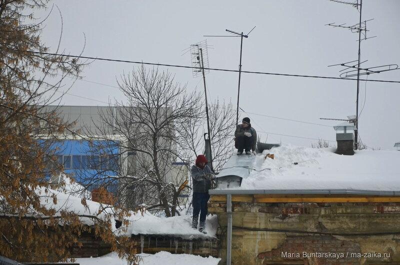 Как две птички, Саратов, Князевский взвоз, 19 января 2016 года