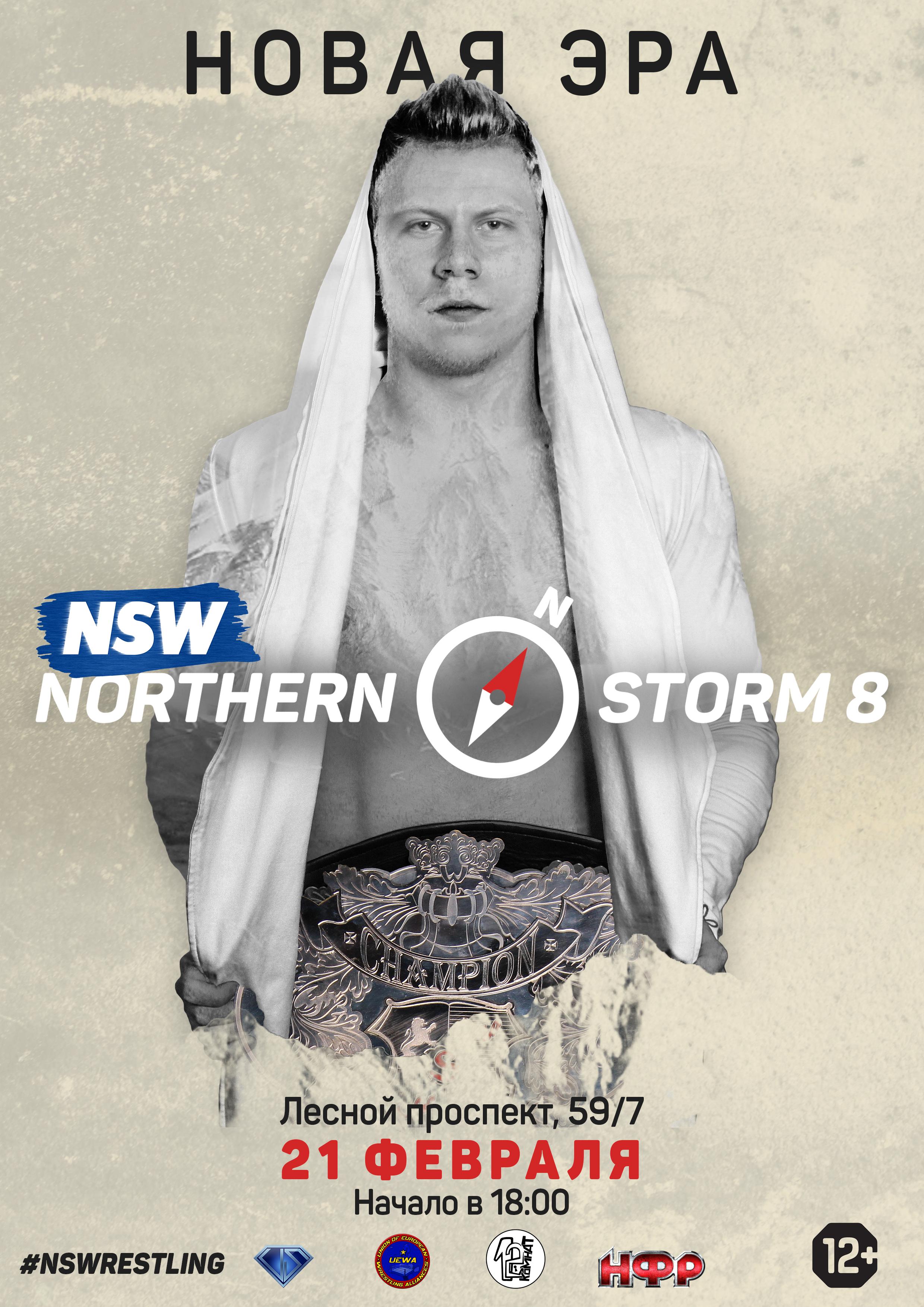 Постер Northern Storm 8