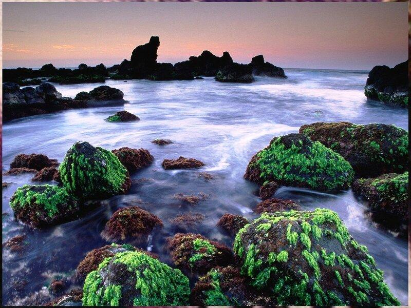Гавайи (90).jpg