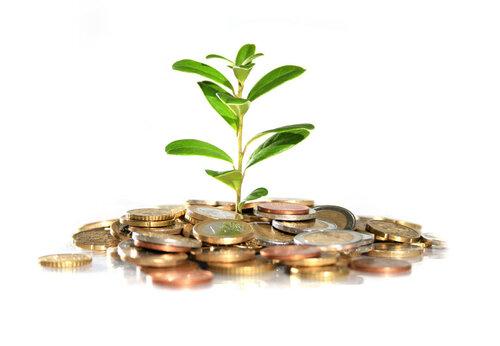 Новый проект по улучшению инвестиционного климата в Молдове