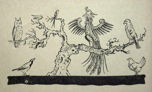 Как птицы учились строить гнёзда.