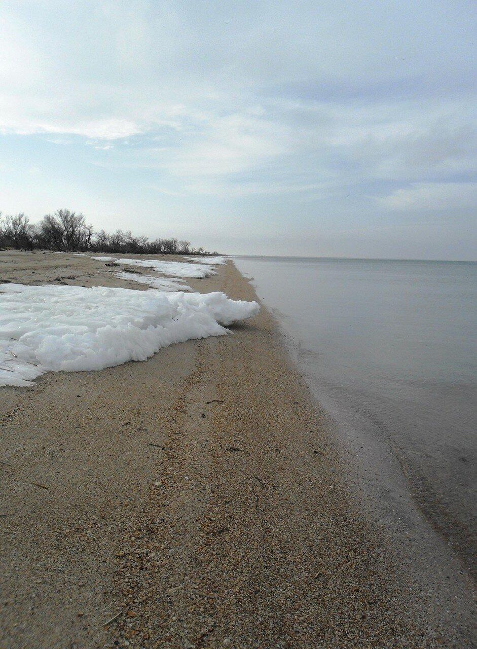 На февральском, песчаном берегу ...SAM_5631.JPG