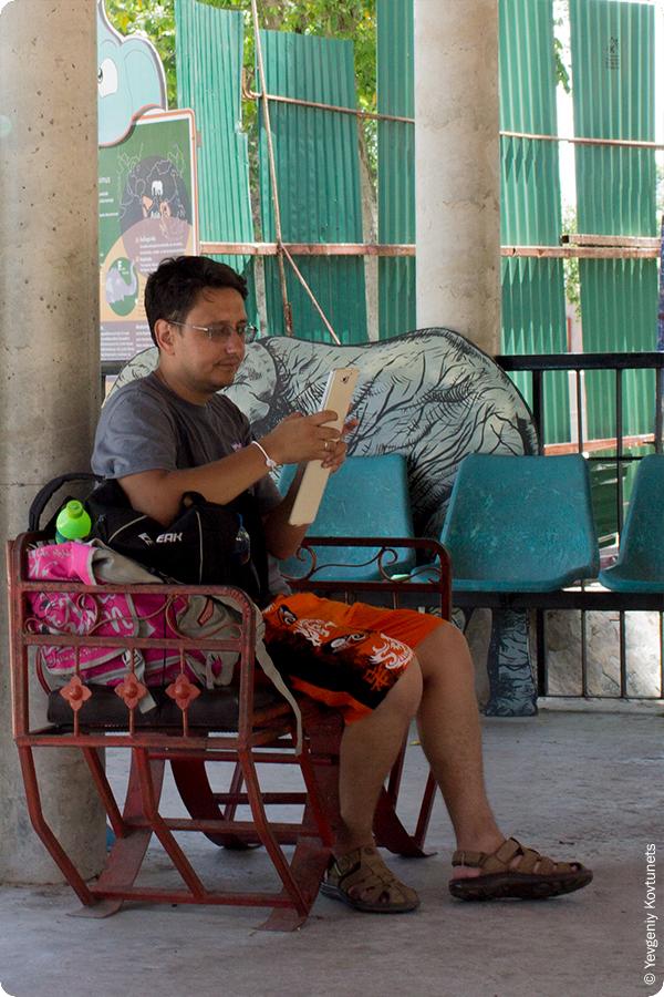 Евгений Ковтунец, автор mytripstory.ru залипает в смартфон в слоновнике контактного зоопарка Khao-Kheow