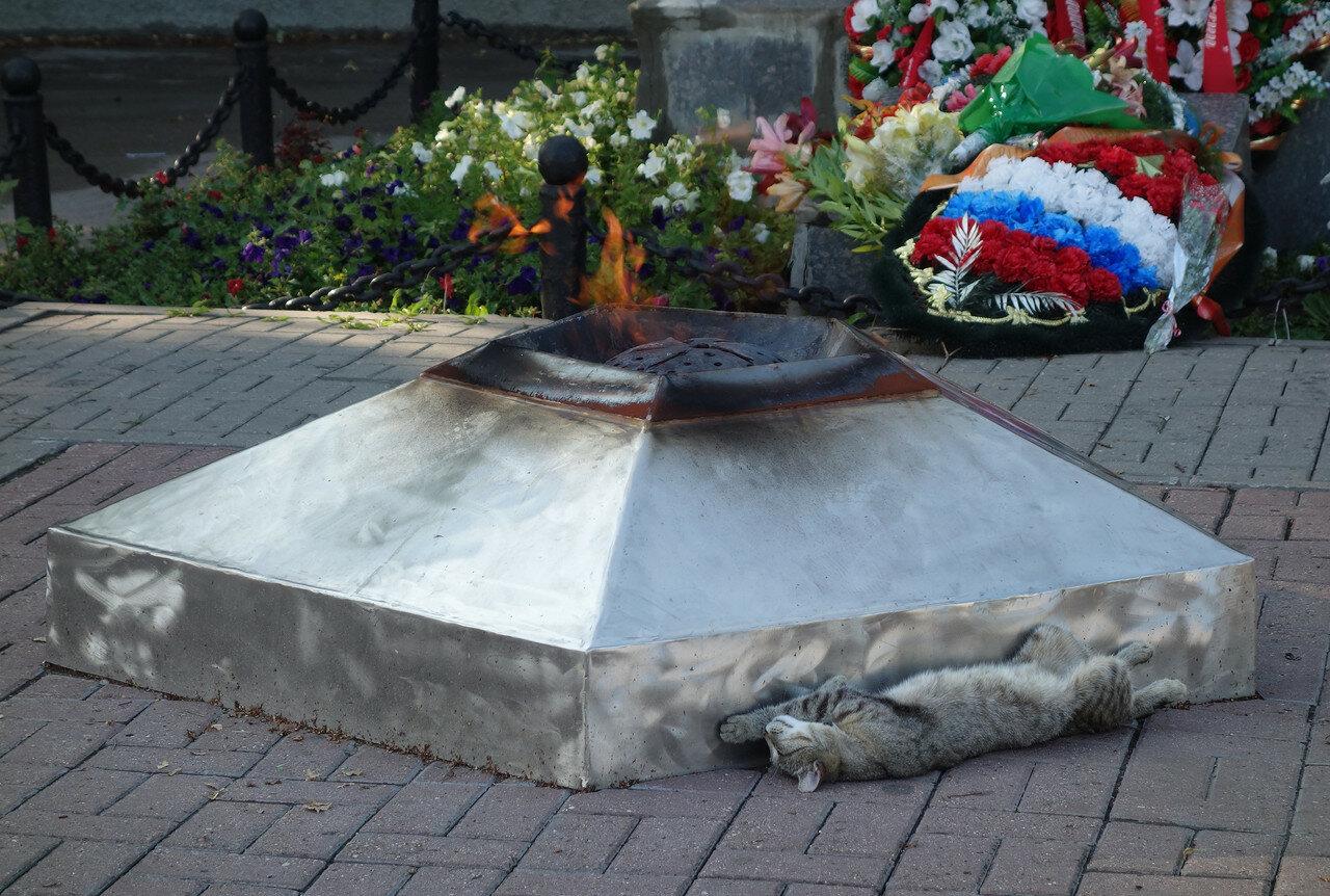 греется у огня