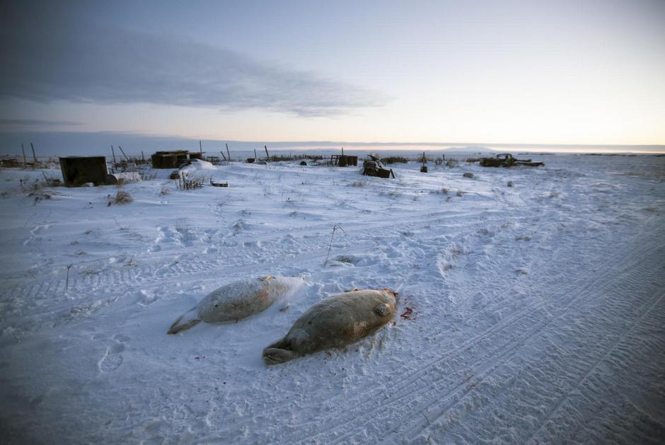 Деревня Шишмарёв: поселок на Аляске с русским именем