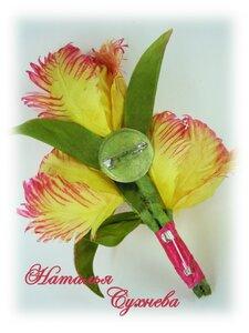 Весенние цветы-тюльпаны, подснежники и прочие... 0_14b504_979898e1_M