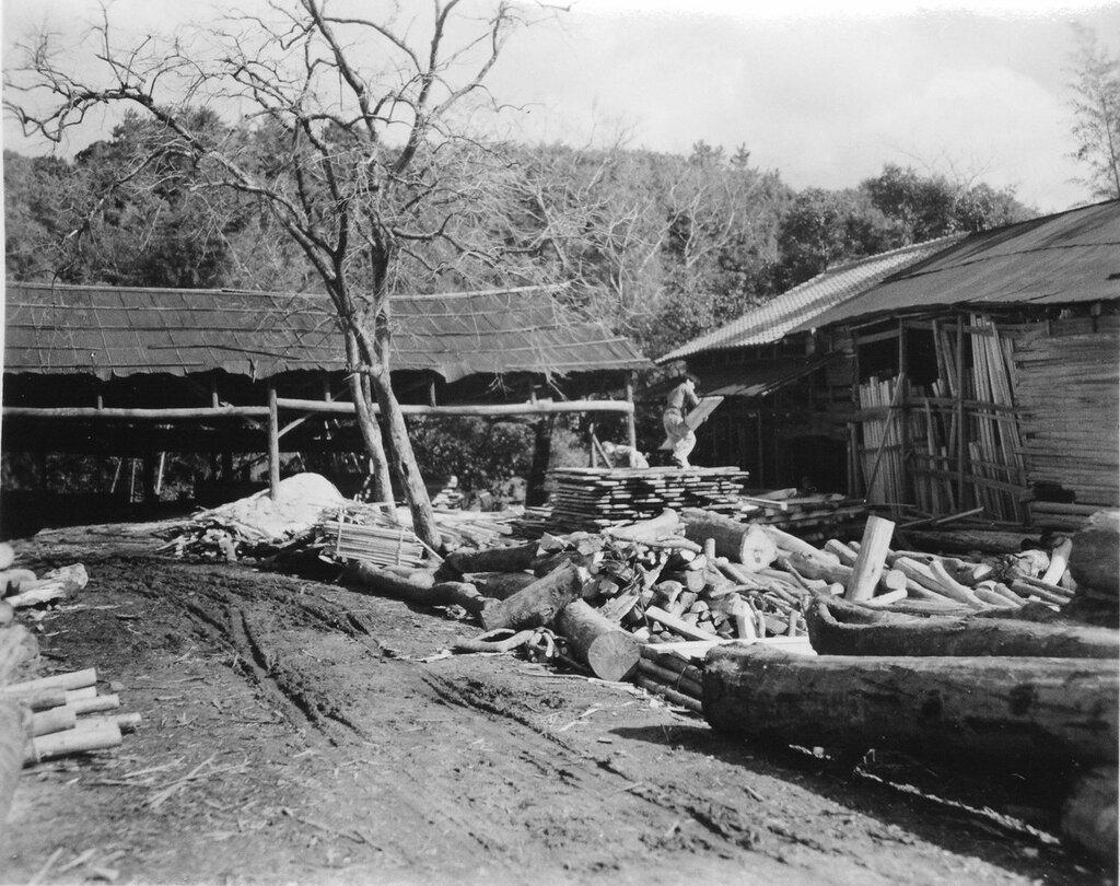 Sawmill near Fukuoka, March 24, 1946