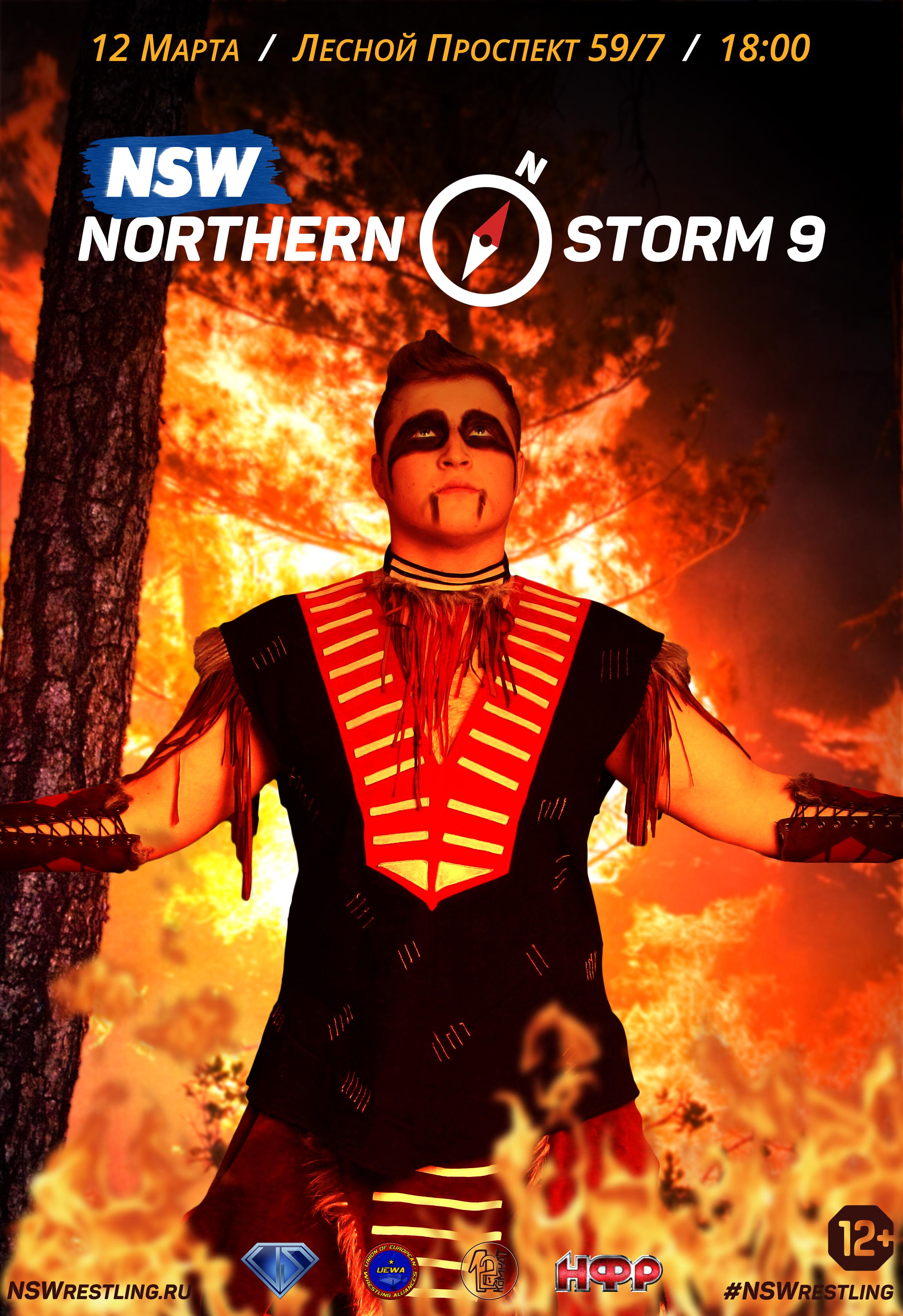 Постер Northern Storm 9