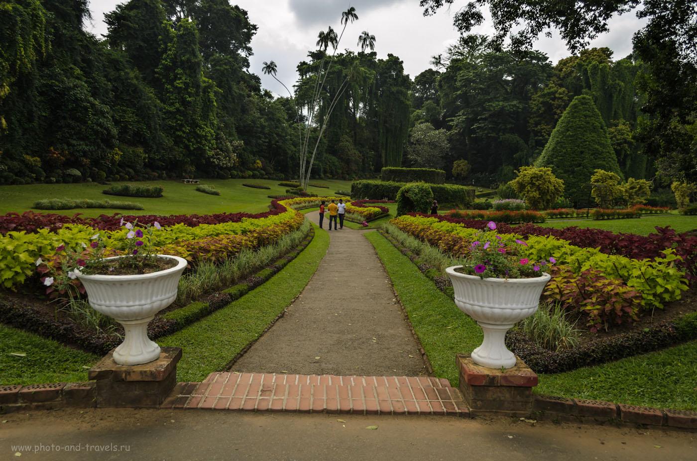 Фотография 16. У центрального входа в Королевский Ботанический Сад Перадения (The Royal Botanical Garden of Peradeniya) в окрестностях города Канди (Kandy). Отзывы об отдыхе на Шри-Ланке. Интересные экскурсии.