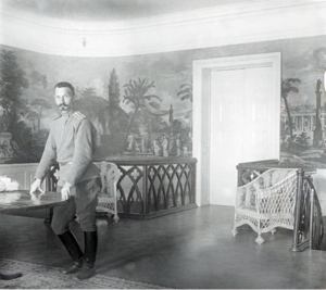 43. 1915. Полковник Л. В. Головин, начальник штаба 46-й пехотной дивизии. Июнь. Яновец-на-Висле