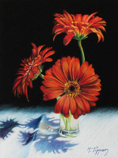 red-gerbera-daisies.jpg