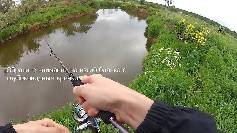 (c) FishComm.Ru