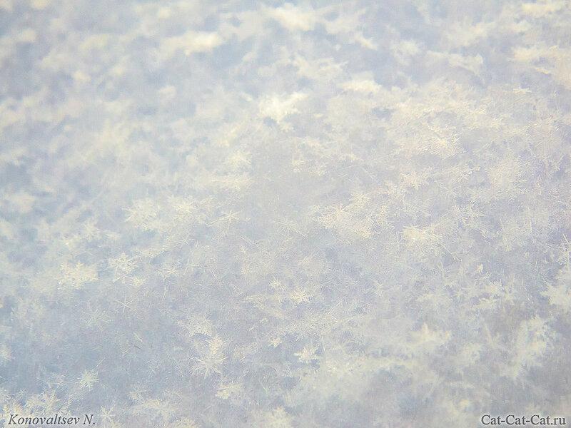 Снег вблизи