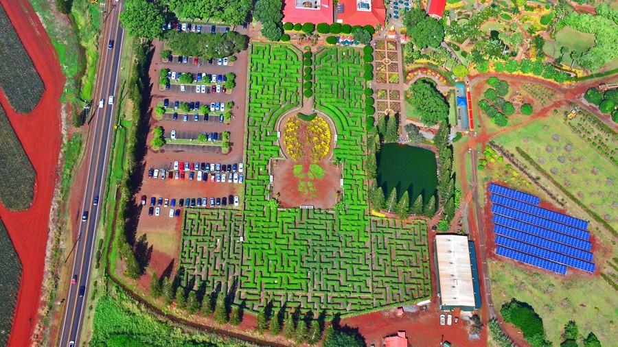 4. Ананасовый лабиринт (Вахайава, Гавайи) Этот постоянный хедж-лабиринт, который был крупнейшим в ми