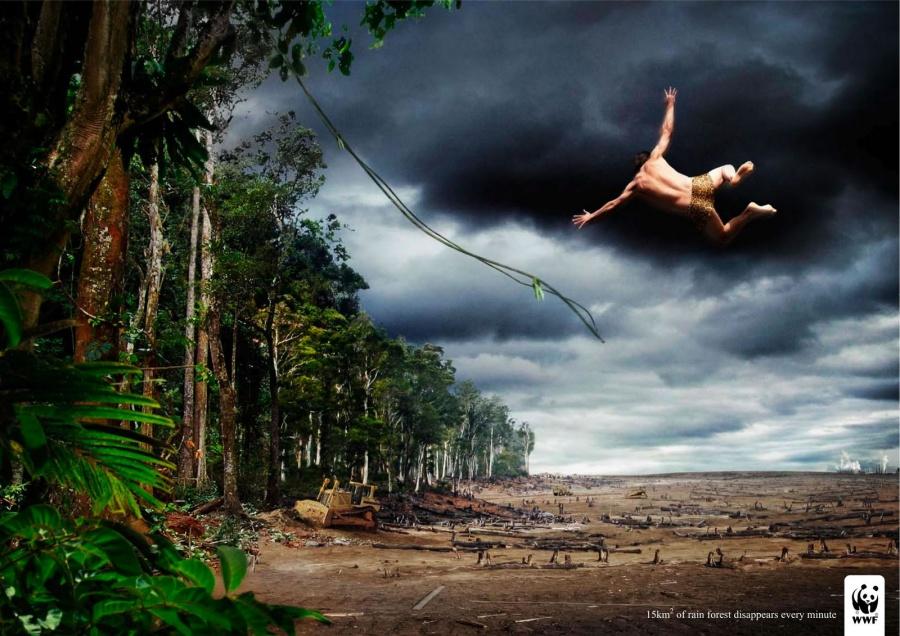Останови изменение климата, прежде чем климат изменит тебя
