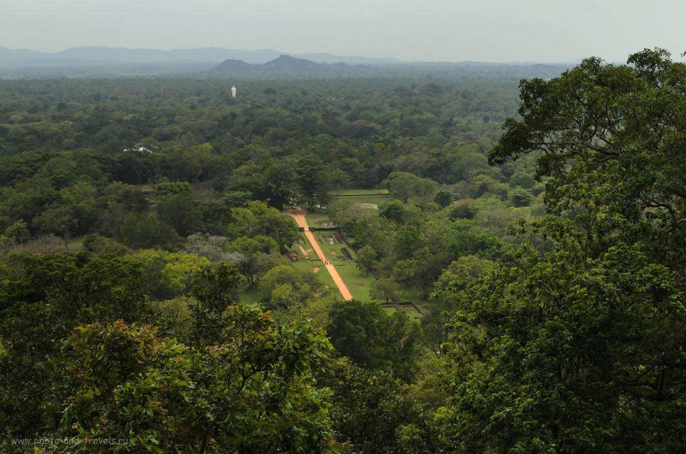 Фото 8. Поднимаясь на Львиную скалу вертикально вверх, вы не можете перевести дух... Не только от того, что запыхались, но и потому что вокруг - красотища!!! Отчеты туристов о поездке на гору Сигирия в Шри-Ланке.
