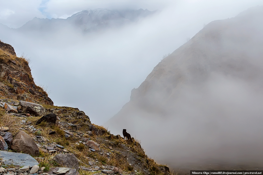 Степанцминда в тумане