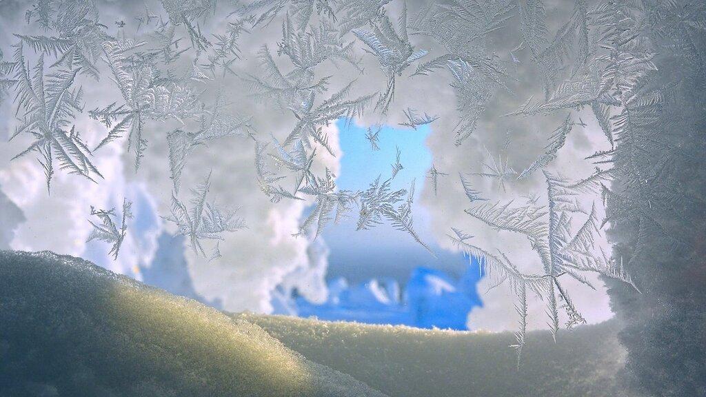 zima-sneg-snezhinki-makro.jpg