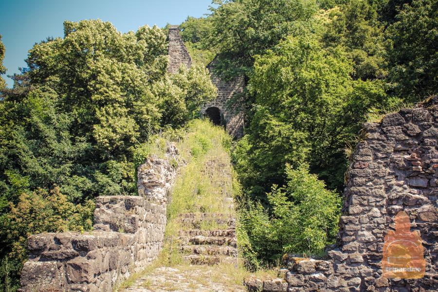 Руины лежат в стороне от тропы
